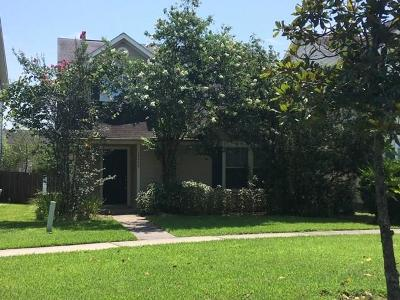 Houston Single Family Home For Sale: 19509 Wann Park Drive