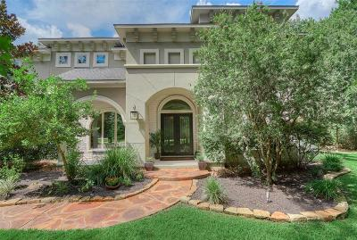Spring Single Family Home For Sale: 3903 Epic Drive