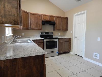 Houston Single Family Home For Sale: 1301 Norham Street