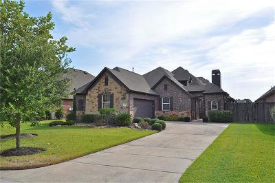 Porter Single Family Home For Sale: 20042 Mitchell Cove Drive