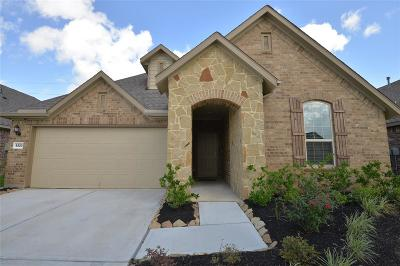 Katy Single Family Home For Sale: 5223 Baroness Lane