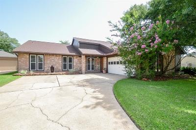 Katy Single Family Home For Sale: 21227 Park York Drive