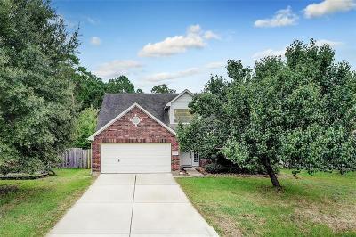 Porter Single Family Home For Sale: 22981 Sebastian Drive