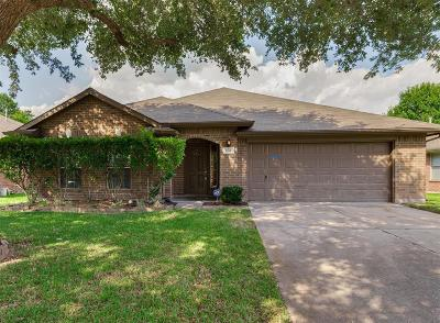 Rosenberg Single Family Home For Sale: 1501 Village Court Drive