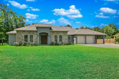 Conroe Single Family Home For Sale: 14191 Strausie Lane