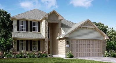 Dickinson Single Family Home For Sale: 3114 Zachary Bay Lane