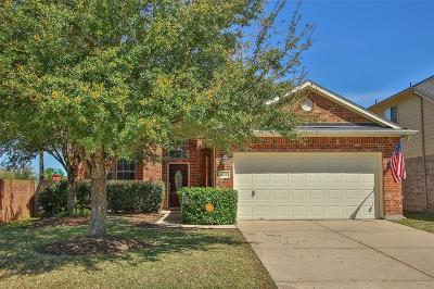 Pearland Single Family Home For Sale: 12925 Meadow Springs Drive