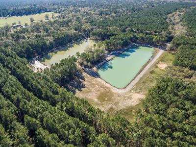 Country Home/Acreage For Sale: 905 Pelican Road