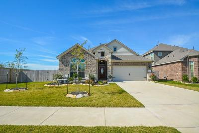 Missouri City Single Family Home For Sale: 2338 Argos Drive