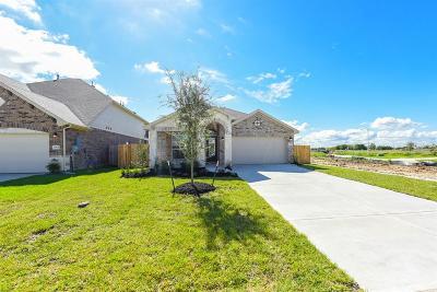 League City TX Single Family Home For Sale: $276,689