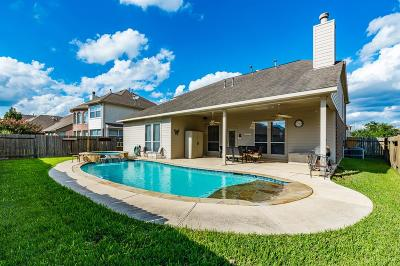 Tomball Single Family Home For Sale: 13035 Chatfield Manor Lane