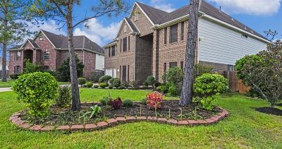 Pearland Single Family Home For Sale: 1401 Pine Knot Court
