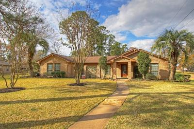 Houston Single Family Home For Sale: 5902 Echo Lake Lane