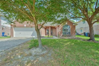 Spring Single Family Home For Sale: 3011 Trinity Pass Court