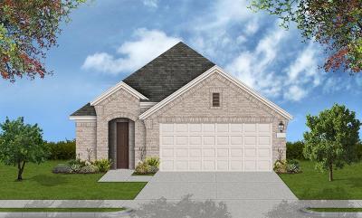 Houston Single Family Home For Sale: 12647 Vogle Creek Trail