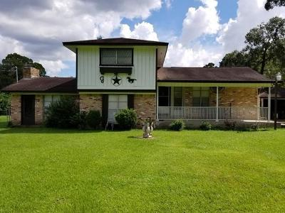 Spring Single Family Home For Sale: 3006 Spring Creek Drive