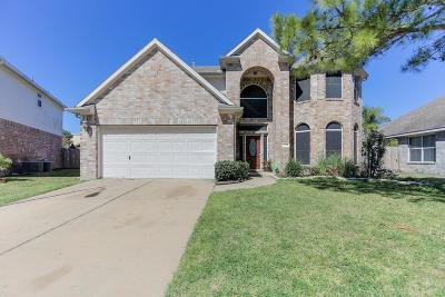 Tomball Single Family Home For Sale: 12218 Catskill Crest Drive