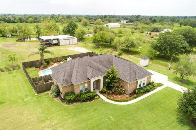 Alvin Single Family Home For Sale: 17619 Willow Pond Road