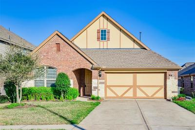 League City Single Family Home For Sale: 1419 Nacogdoches Valley Drive