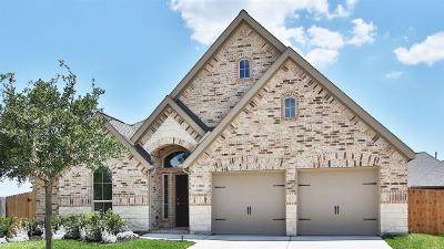 Pearland Single Family Home For Sale: 13806 Granite Manor Lane