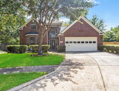 Houston Single Family Home For Sale: 7702 Pebble Run Court