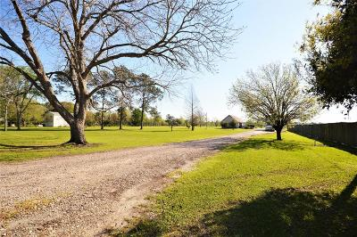 Pearland Single Family Home For Sale: 1901 Stone Road