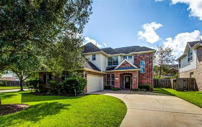 Sugar Land Single Family Home For Sale: 4714 Schiller Park Lane