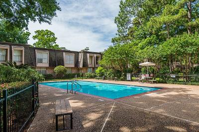 Harris County Rental For Rent: 12633 Memorial Drive #204