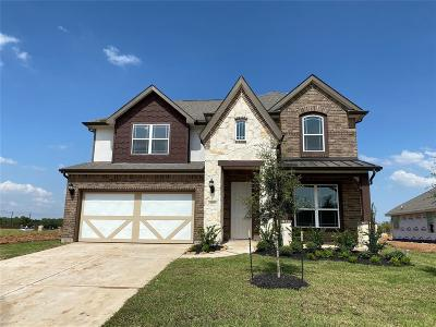 Pearland Single Family Home For Sale: 4987 Millican Drive
