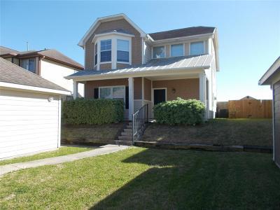 Willis Single Family Home For Sale: 10809 S Lake Mist Lane