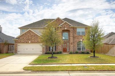 Tomball Single Family Home For Sale: 9123 Cedar Run Fal