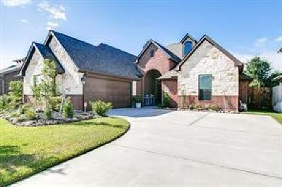 Tomball Single Family Home For Sale: 21203 Knight Quest Drive
