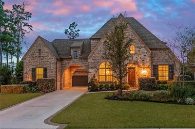 The Woodlands Single Family Home For Sale: 7 Waning Moon Drive