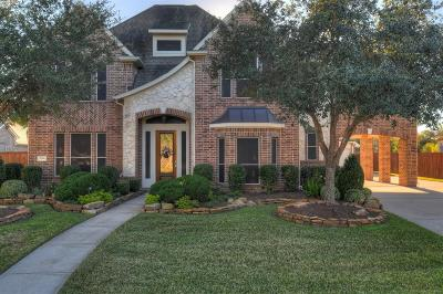 Friendswood Single Family Home For Sale: 3246 Prince George Drive