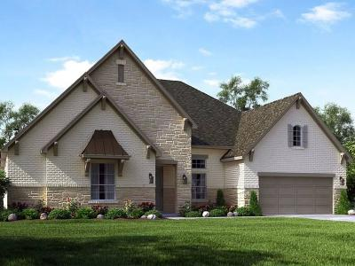 Sugar Land Single Family Home For Sale: 14 Chalice Trail