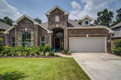 Single Family Home For Sale: 3581 Falcon Way