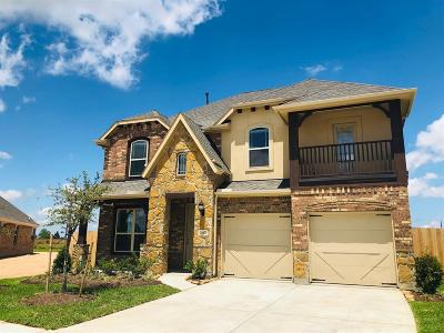 Katy Single Family Home For Sale: 24402 Arbor Landing Lane