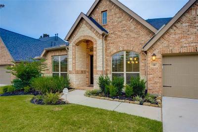 Montgomery Single Family Home For Sale: 118 Diamond Back Lane