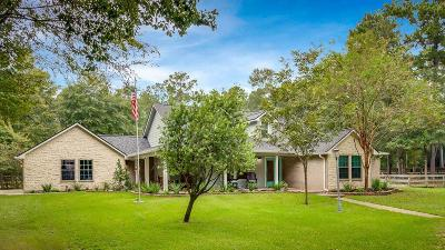Single Family Home For Sale: 1407 Cattle Drive
