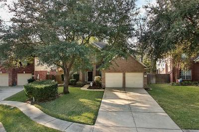 Conroe Single Family Home For Sale: 31615 Trails Park Lane