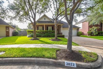 Missouri City Single Family Home For Sale: 3822 Alpine Circle Circle
