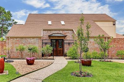 Houston Single Family Home For Sale: 10227 Inwood Drive