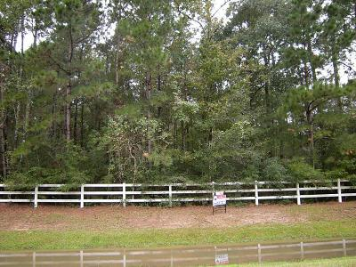 Huffman Residential Lots & Land For Sale: 1018 S Commons View Drive