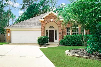 The Woodlands Single Family Home For Sale: 35 Griffin Hill Court