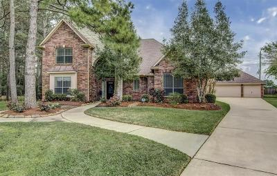 Cypress Single Family Home For Sale: 17503 Pine Brook Trail