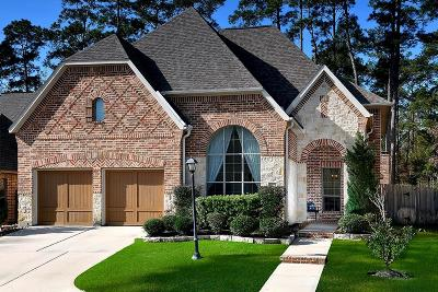 The Woodlands Single Family Home For Sale: 8823 Van Allen Drive