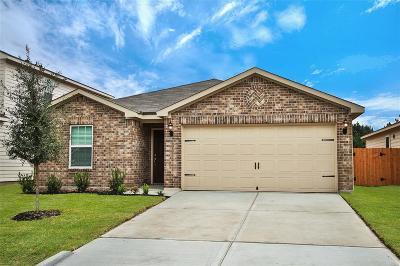 Houston Single Family Home For Sale: 2423 Fallen Pine Drive