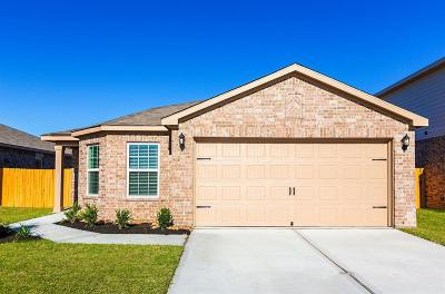 Waller County Single Family Home For Sale: 136 Dogwood Point Drive