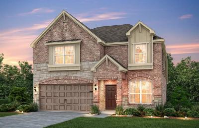 Katy Single Family Home For Sale: 23806 Mesia Meadow Ln