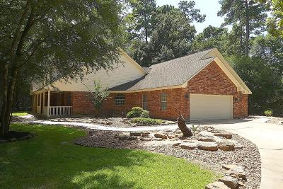 Conroe Single Family Home For Sale: 41 Lake Drive